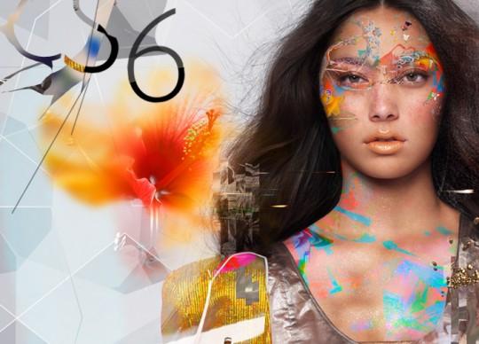 Adobe Design Web Premium Collection