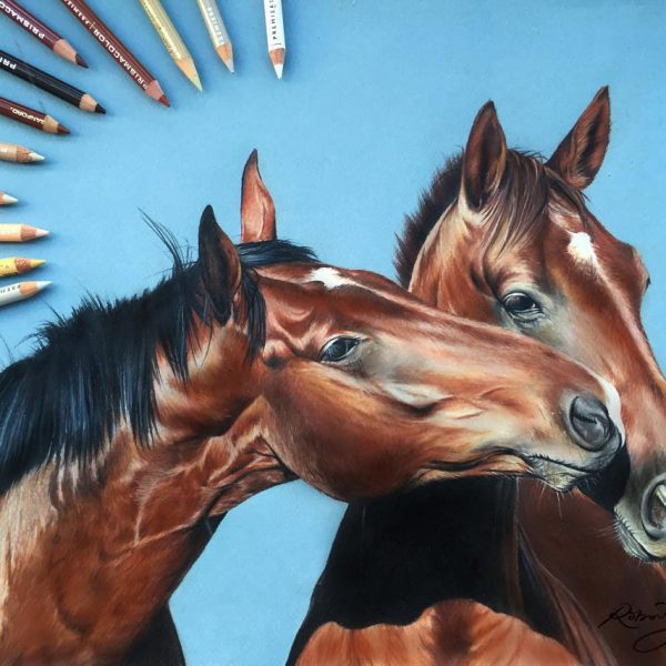 Incredible Photo Realistic Pencil Drawings by Robin Gan
